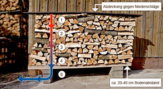 richtige-brennholz-lagerung